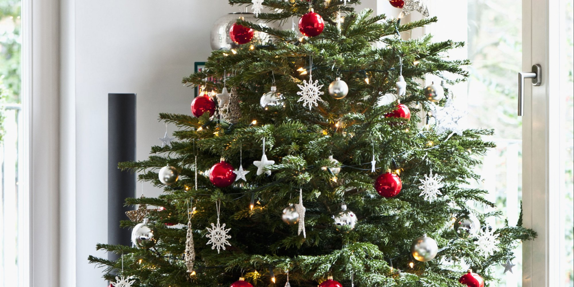 How To Take Care Of A Real Christmas Tree.The Do S And Don Ts To Decorating The Perfect Christmas Tree