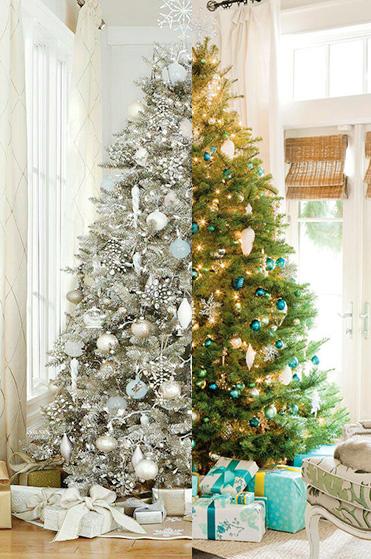 White vs Green Christmas Tree