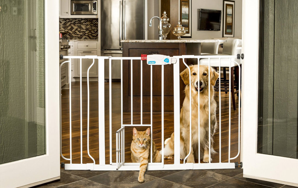 Pet proofing a new home
